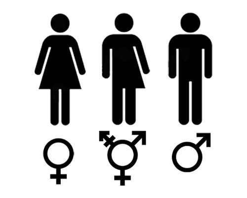 Något om kön? - ett försök att reda ut begreppen